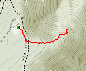 Hogback Mountain Trail Map