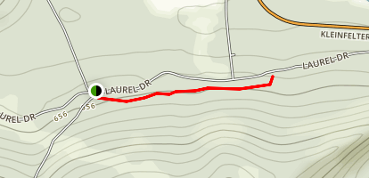 Forestry Demo Trail Map