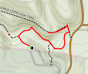 Cedar Falls Trail Map