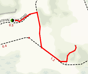 Raymond Observation Tower Trail Map