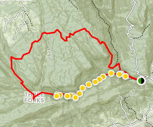 Devils Fork and Devils Bathtub Loop Trail Map