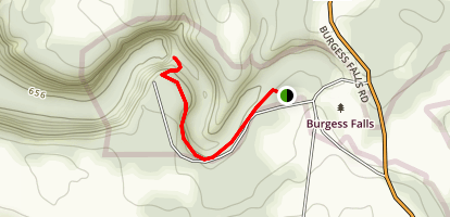 Burgess Falls Trail  Map