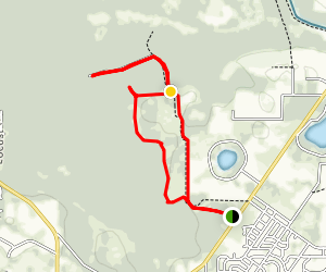 Chernobyl Memorial Forest Loop Map