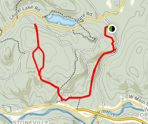 Erving Forest Trail Map