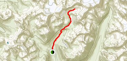 Reed Lakes Trail Map