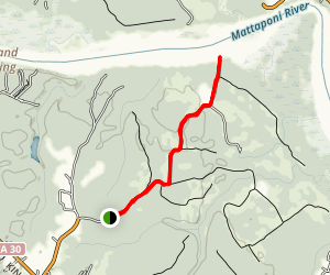 Sandy Point State Forest Trails Map
