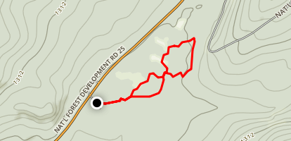 Oldgrowth Loop Trail Map