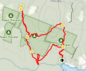 Hickory Hills Blue Trail Yellow Trail Loop Map