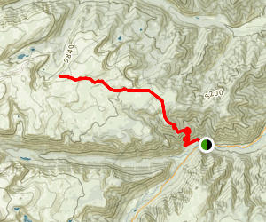 Beartrack Trail to Silver Run Plateau Map