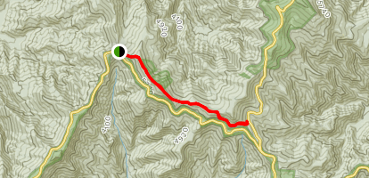 Mount Mitchell State Park Trail Map