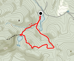 Ann Stokes Loop Map