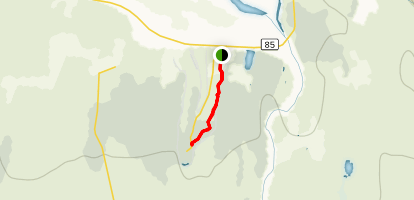 Through the Woods Trail Map