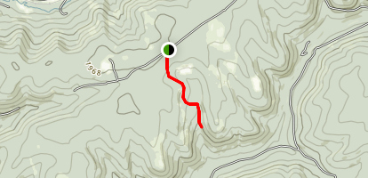 Hector Falls Trail Map