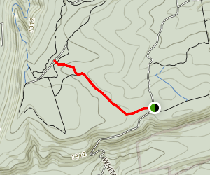 Wolf Pond Trail Map