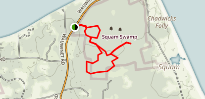 Squam Swamp Interpretive Trail Map