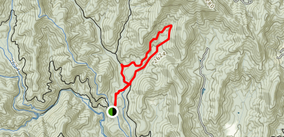 Bear Branch Loop Trail Map