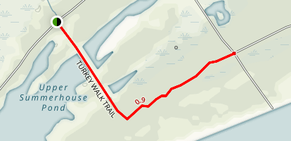 Turkey Walk Trail Map