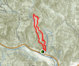 Thrift Cove Loop Trail Map