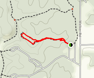 Mossy Hill Trail Map