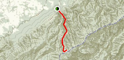 Spruce Thicket Trail Map