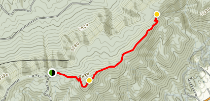 Holston Mountain Trail Map