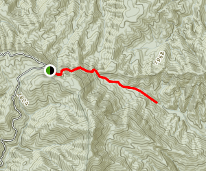 Stiffknee Trail Map