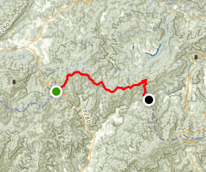 Appalachian Trail: Iron Mountain Gap to Hughes Gap Map