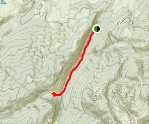 South Fork Trail to Pioneer Falls Map