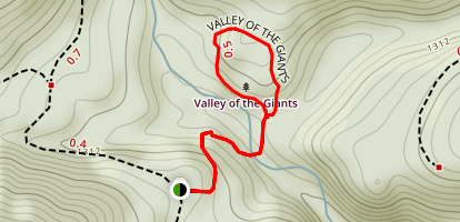 Valley of the Giants Trail Map