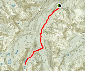 Grayling and Lion Lakes Map