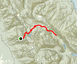 Graves Creek Trail No. 1 Map