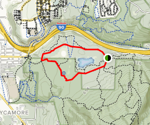 Ruths Big Tree Trail to Bus Trail Loop Map