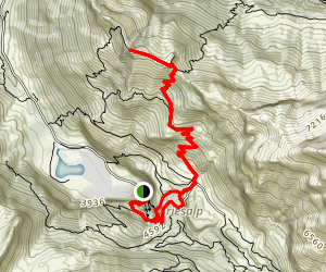 Kiental Trail Map