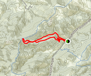 Emmett's Trail and Mini Ridge Loop  Map