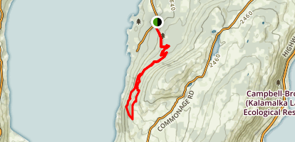RPM and Ellison DH Trail Map
