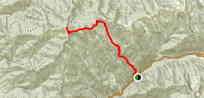 Lobo Peak Via Italianos Canyon Trail Map