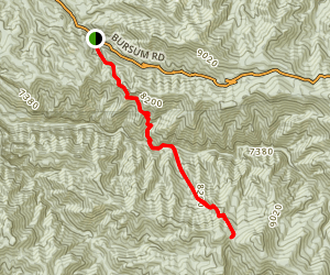 Deloche Trail Map