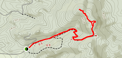 Guadalupe Mountain Trail Map