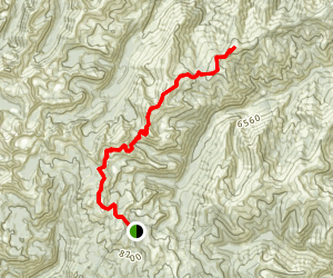 Gant Ridge Trail Map