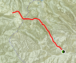 Cooper Point Trail Map