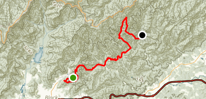 Montreat to Curtis Creek Map