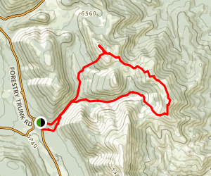 Mount Hornecker Loop Trail Map