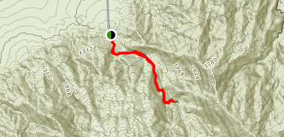 Mosaic Canyon Trail Map