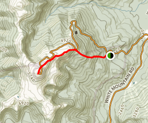 Nelson Crag Trail Map