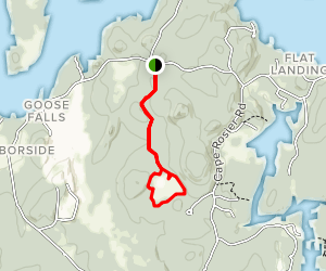 Fresh Pond Trail Map
