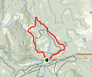 Snowshoe Hare Loop Map