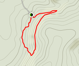 Stone Face Trail Map
