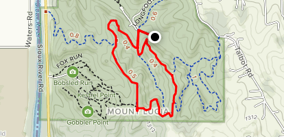 Mt. Lucia and Ruth's Ridge Trail Loop Map