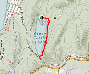 Green Turtle Pond Map