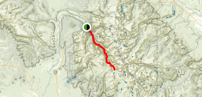 Shannon Pass Trail Map
